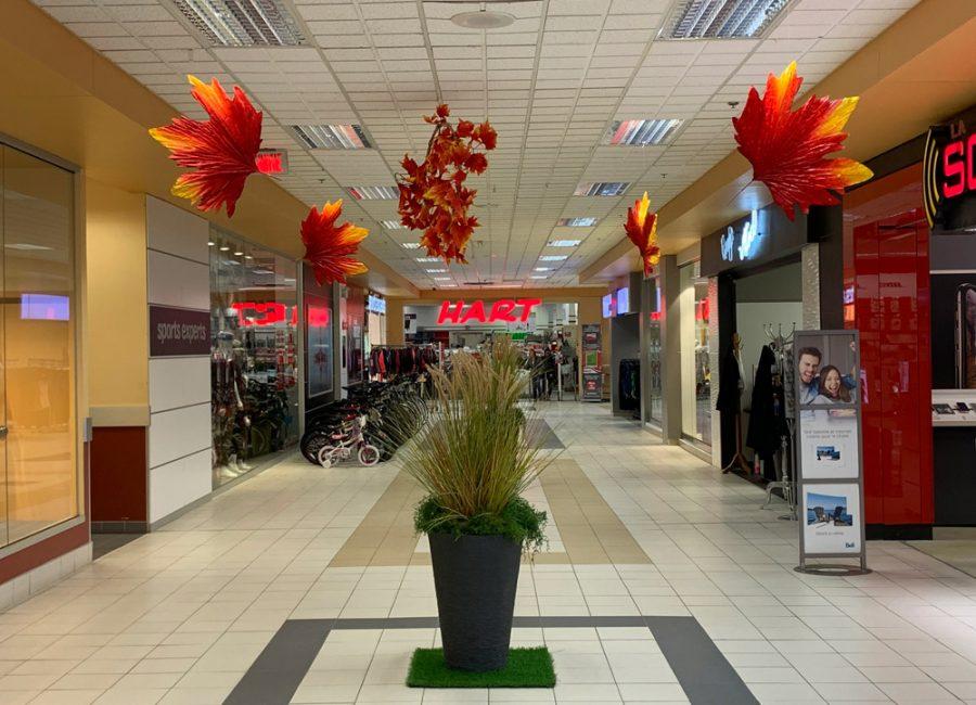 https://plaza.ca/wp-content/uploads/2020/05/Les-Galeries-Montmagny-Montmagny-3-web.jpg
